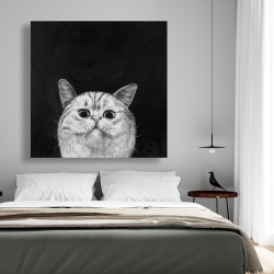 Canvas 48 x 48 - Watching cat