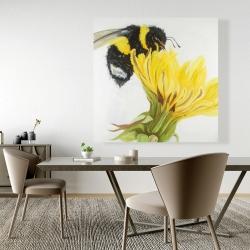 Canvas 48 x 48 - Little bumblebee on a dandelion