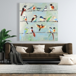 Canvas 48 x 48 - Small abstract colorful birds
