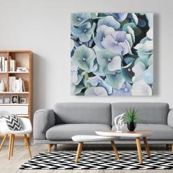 Canvas 48 x 48 - Hydrangea plant