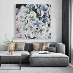 Canvas 48 x 48 - Colorful hydrangea flowers