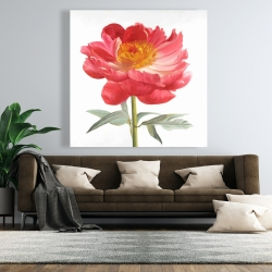 Canvas 48 x 48 - Pink peony