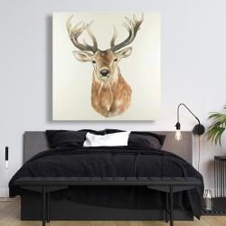 Canvas 48 x 48 - Front deer portrait