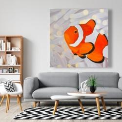 Canvas 48 x 48 - Clownfish