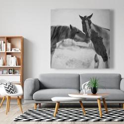 Canvas 48 x 48 - Horses lover