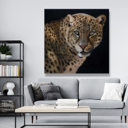 Canvas 48 x 48 - Realistic fierce leopard