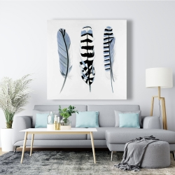 Canvas 48 x 48 - Delicate feathers