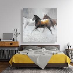 Canvas 48 x 48 - Herd of wild horses