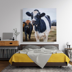 Canvas 48 x 48 - Two cows eating grass