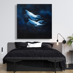 Canvas 48 x 48 - Two swimming dolphins