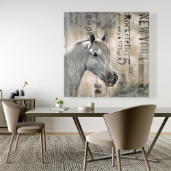 Canvas 48 x 48 - Rustic white horse