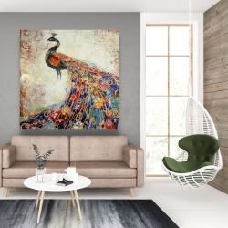 Canvas 48 x 48 - Majestic peacock