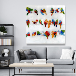 Canvas 48 x 48 - A lot of colorful birds on a wire