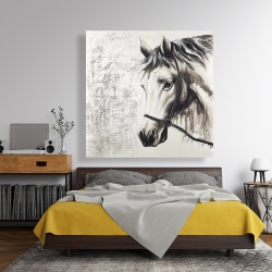 Canvas 48 x 48 - Alpha the white horse