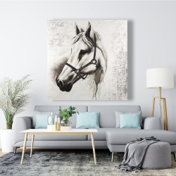 Canvas 48 x 48 - Flicka the white horse
