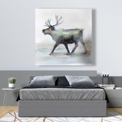 Canvas 48 x 48 - Caribou