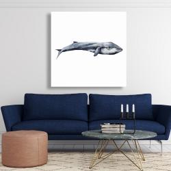 Canvas 48 x 48 - Watercolor whale