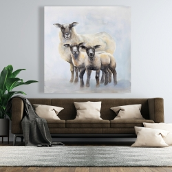 Canvas 48 x 48 - Sheep family