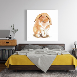 Canvas 48 x 48 - Lop-rabbit