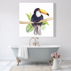 Canvas 48 x 48 - Toucan