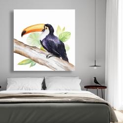 Canvas 48 x 48 - Toucan perched