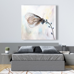 Canvas 48 x 48 - Butterfly on blue flowers