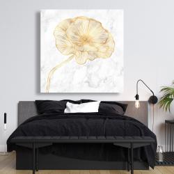 Canvas 48 x 48 - Golden poppy flower