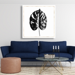 Canvas 48 x 48 - Split leaf philodendron with rose line