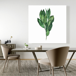 Canvas 48 x 48 - Bay leaves bundle