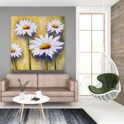Canvas 48 x 48 - Daisies at sun