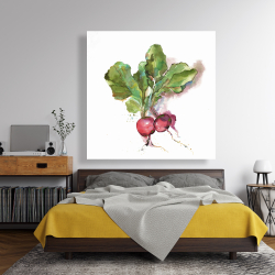 Canvas 48 x 48 - Watercolor radish