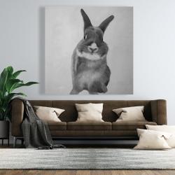 Canvas 48 x 48 - Funny gray rabbit