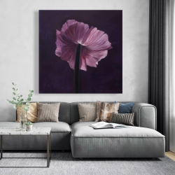 Canvas 48 x 48 - Purple petals