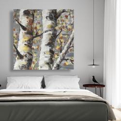 Canvas 48 x 48 - Budding white birches 1