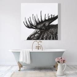 Canvas 48 x 48 - Moose plume