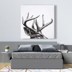 Canvas 48 x 48 - Roe deer plume