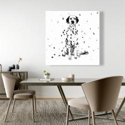 Canvas 48 x 48 - Dalmatian dog
