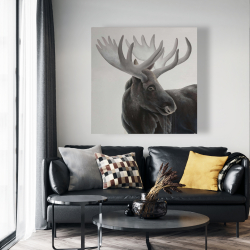 Canvas 48 x 48 - Bull moose