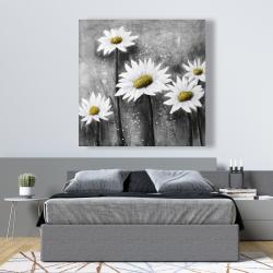 Canvas 48 x 48 - Daisies