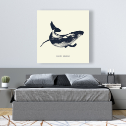 Canvas 48 x 48 - Blue whale sketch