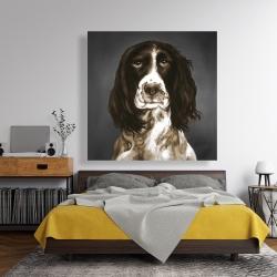 Canvas 48 x 48 - Brown english springer spaniel