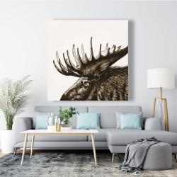 Canvas 48 x 48 - Moose plume sepia