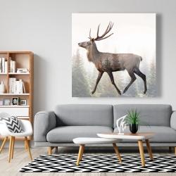 Canvas 48 x 48 - Large plume roe deer
