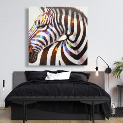 Canvas 48 x 48 - Colorful zebra