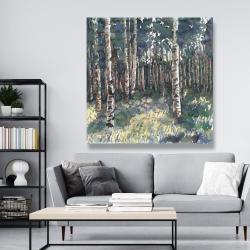 Canvas 48 x 48 - Birches