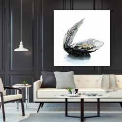 Canvas 48 x 48 - Pearl oyster
