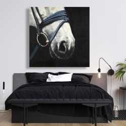 Canvas 48 x 48 - Horse with harness