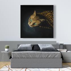 Canvas 48 x 48 - Bengal cat