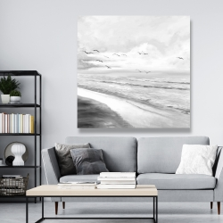 Canvas 48 x 48 - Monochrome tropical sunset