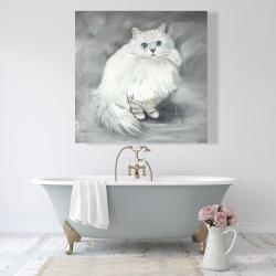 Canvas 48 x 48 - Chinchilla persian cat